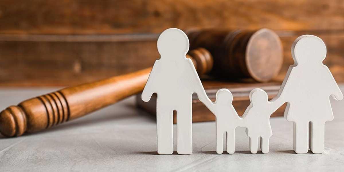 child, law, Adoptio, court Adoption, bazpur